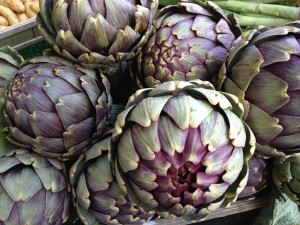 French artichoke